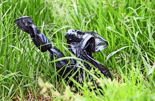Der Bezirksbeirat fordert mehr Mülleimer im Rosental