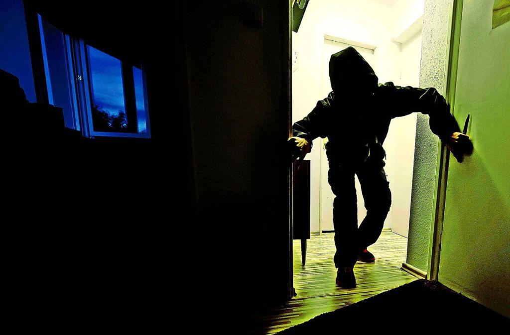 Einbrecher verschaffen sich am ehesten Zugang zu abgelegenen Häusern. Oft kann sie schon der Schnitt der Hecke abschrecken. Foto: dpa
