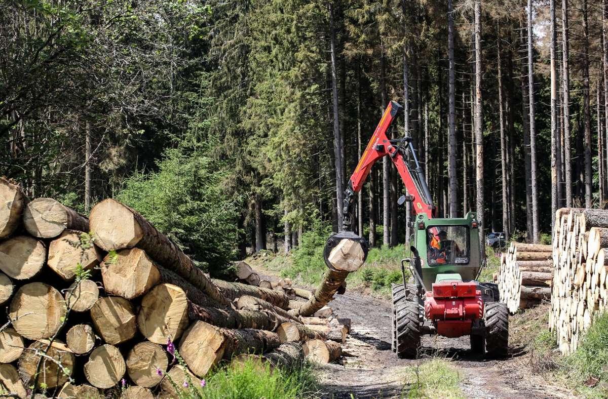 Eine Frau kam bei Waldarbeiten im Ortenaukreis ums Leben. (Symbolbild) Foto: imago images/Rene Traut