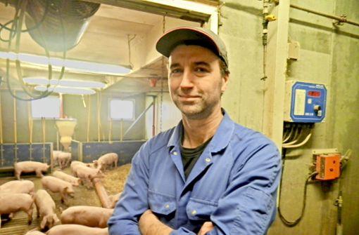 Wie sich Landwirte auf die Schweinepest vorbereiten