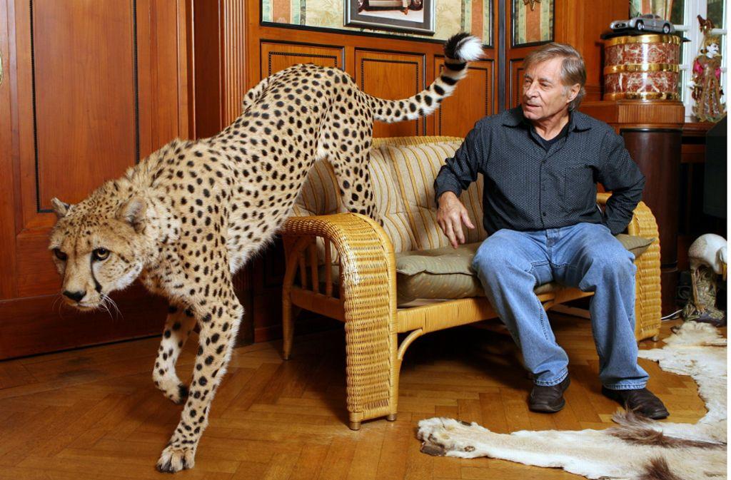 Oft liegen seine Geparden neben Hans-Peter Gaupp auf dem Sofa, während er im TV Fußball sieht. Foto: dpa/Bernd Weißbrod