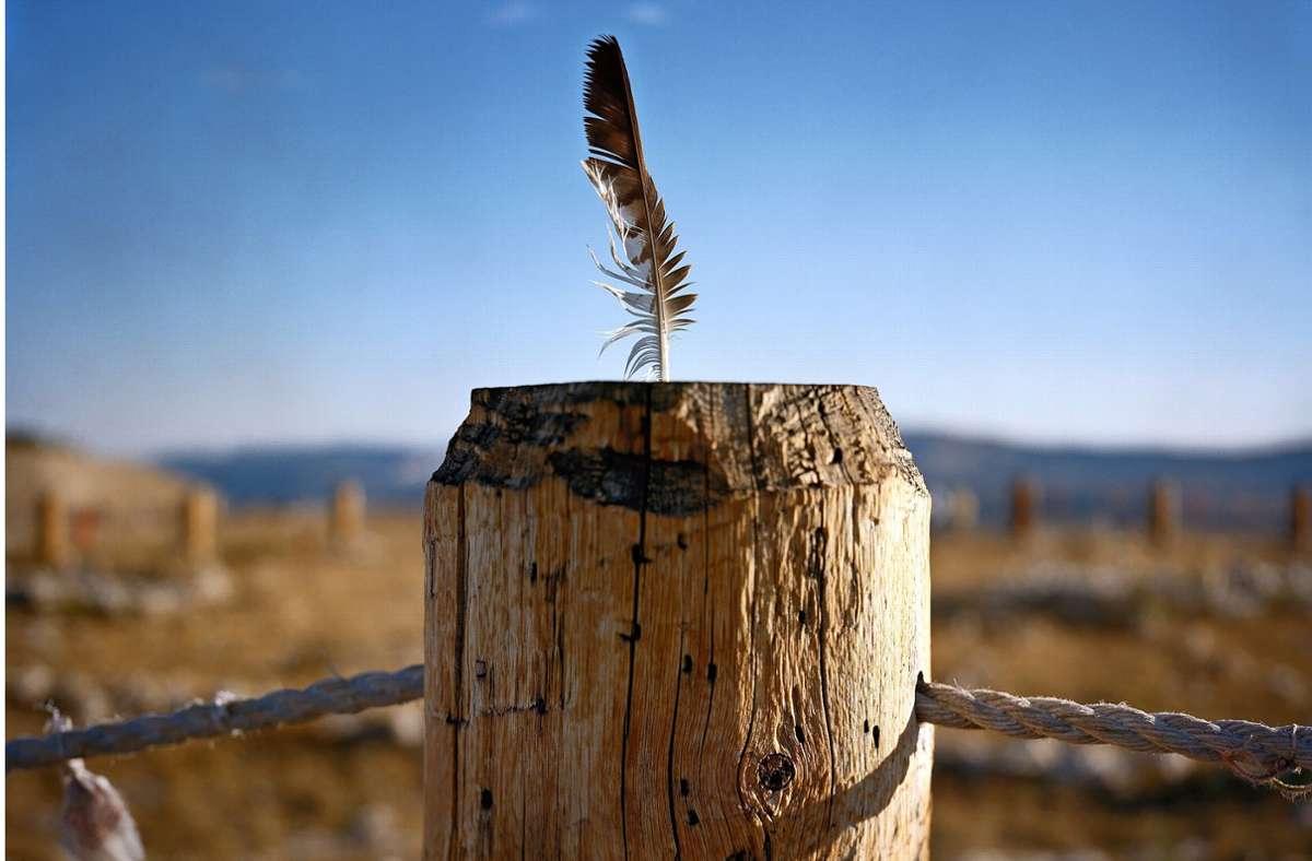 Heilige Stätte der Prärie-Indianer: Adler-Feder am Big Horn Medizin-Rad im US-Bundesstaat Wyoming Foto: Kehrer Verlag/Michael Sherwin