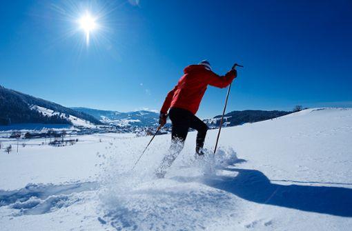 Allein oder in der Gruppe durch den glitzernden Schnee stapfen und die unberührte Natur genießen.