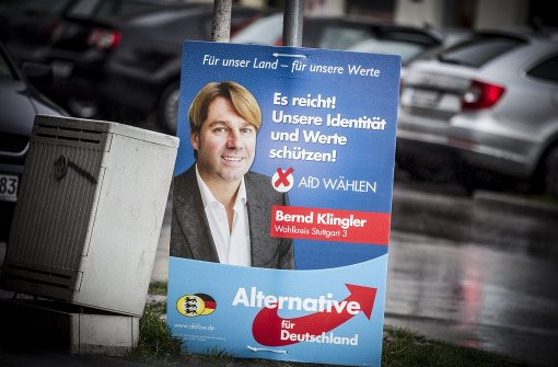 AfD und FDP müssen tief in die Kasse greifen