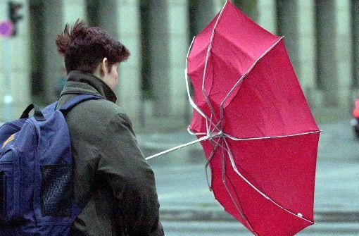 Sturm bringt Zaun ums Rathaus zu Fall