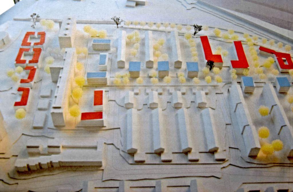 Der Bürgerverein hat die neuen Häuser im Realisierungsteil mit blauen Dächern gekennzeichnet und die für den Ideenteil geplanten Gebäude mit einem roten Dach. Der Siegerentwurf stammt von dem Architekturbüro Schwarz Jacobi. Foto: Alexandra Kratz