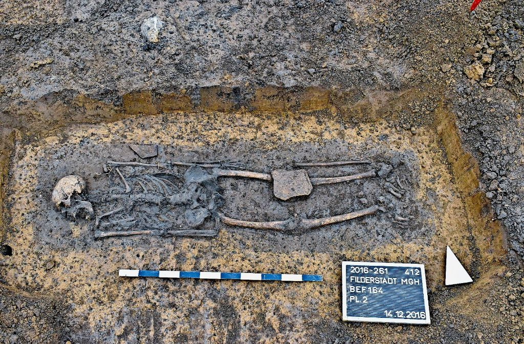 In Baden-Württemberg ist es noch ungewöhnlich: Dieses Skelett eines Menschen aus dem Hochmittelalter in Filderstadt-Bernhausen ist von Archäologen eines privaten Unternehmens ausgegraben worden. Foto: Georg Häußler/Archaeotask