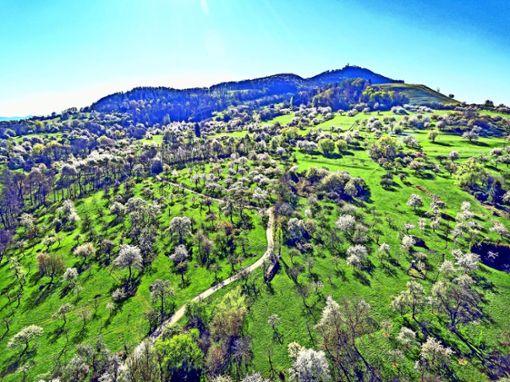 Nachhaltiger Urlaub auf der Schwäbischen Alb