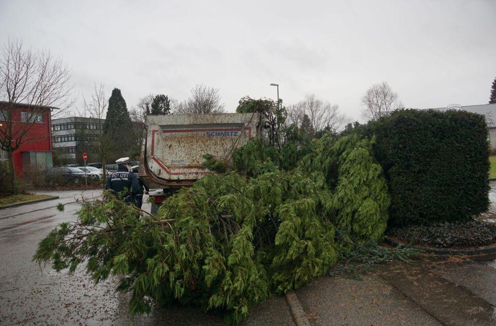 Weitere Bilder der vom Sturm Burglind angerichteten Schäden. Foto: SDMG