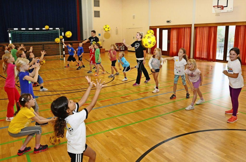 Handballprojekte wie dieses in Vaihingen sind das eine, zur Praxis soll im Sport auch mehr Theorie kommen. Foto: Günter E. Bergmann