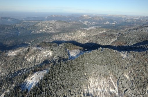 Rund 10 000 Hektar Staatswald will die Landesregierung als Nationalpark im Nordschwarzwald ausweisen. Hier ein Blick auf Forbacher Gemarkung, die auch zur sogenannten Suchkulisse gehört. Foto: dpa