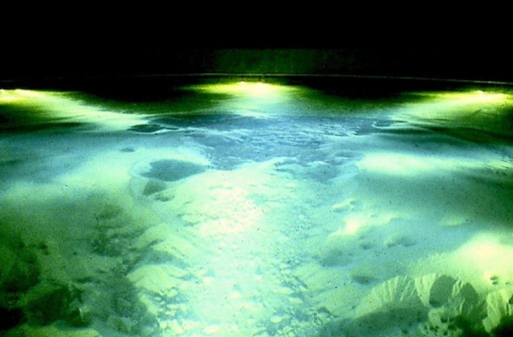 Die Buchbrunnenquelle im Egauwerk bei Dischingen speist 19 Prozent ins Leitungsnetz Foto: LW