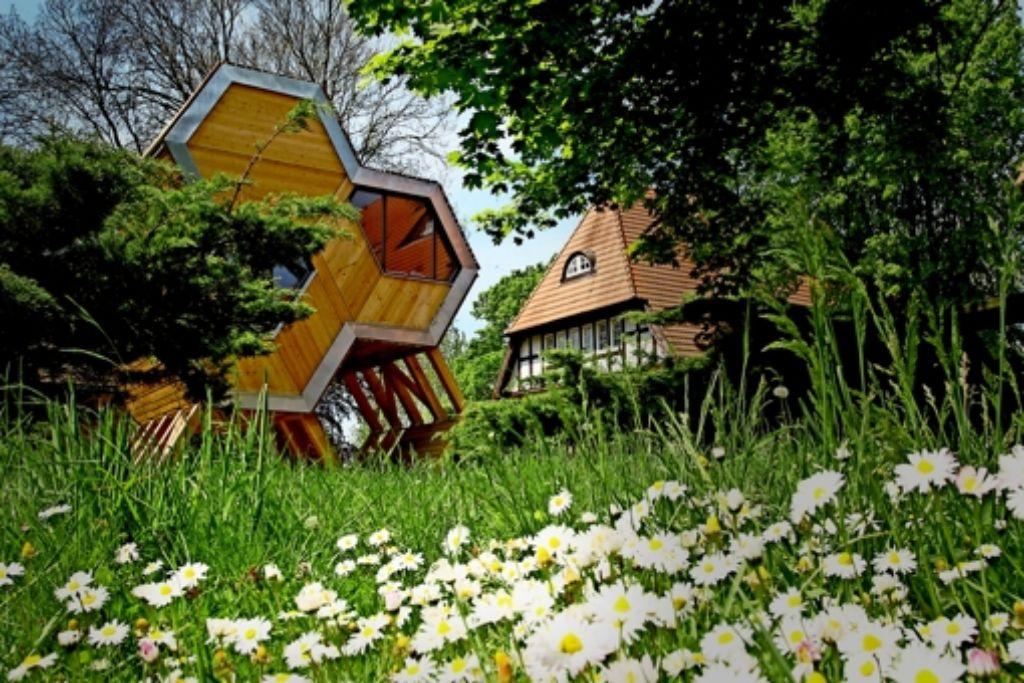 Die Jugendherberge Beckerwitz bei Wismar hat als Erste in Deutschland auf Baumhäuser gesetzt.Sie seien sehr beliebt, heißt es. Foto: DJH  Mecklenburg-Vorpommern