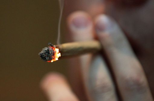 Schizophrenie durch Cannabis-Konsum –  Juristen und Mediziner warnen
