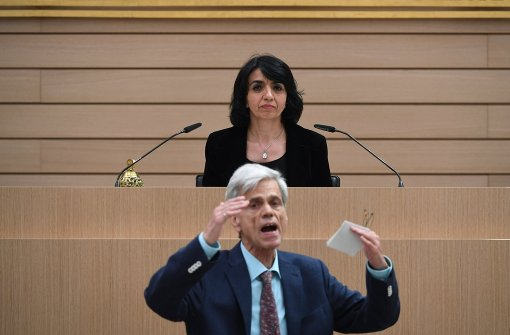AfD-Fraktion bereitet Rauswurf Gedeons vor