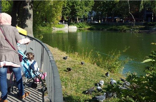 Bis nächsten Sommer ist das gegenüberliegende Ufer neu gemacht. Foto: Kathrin Wesely