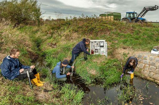 Pestizide belasten kleine Gewässer extrem