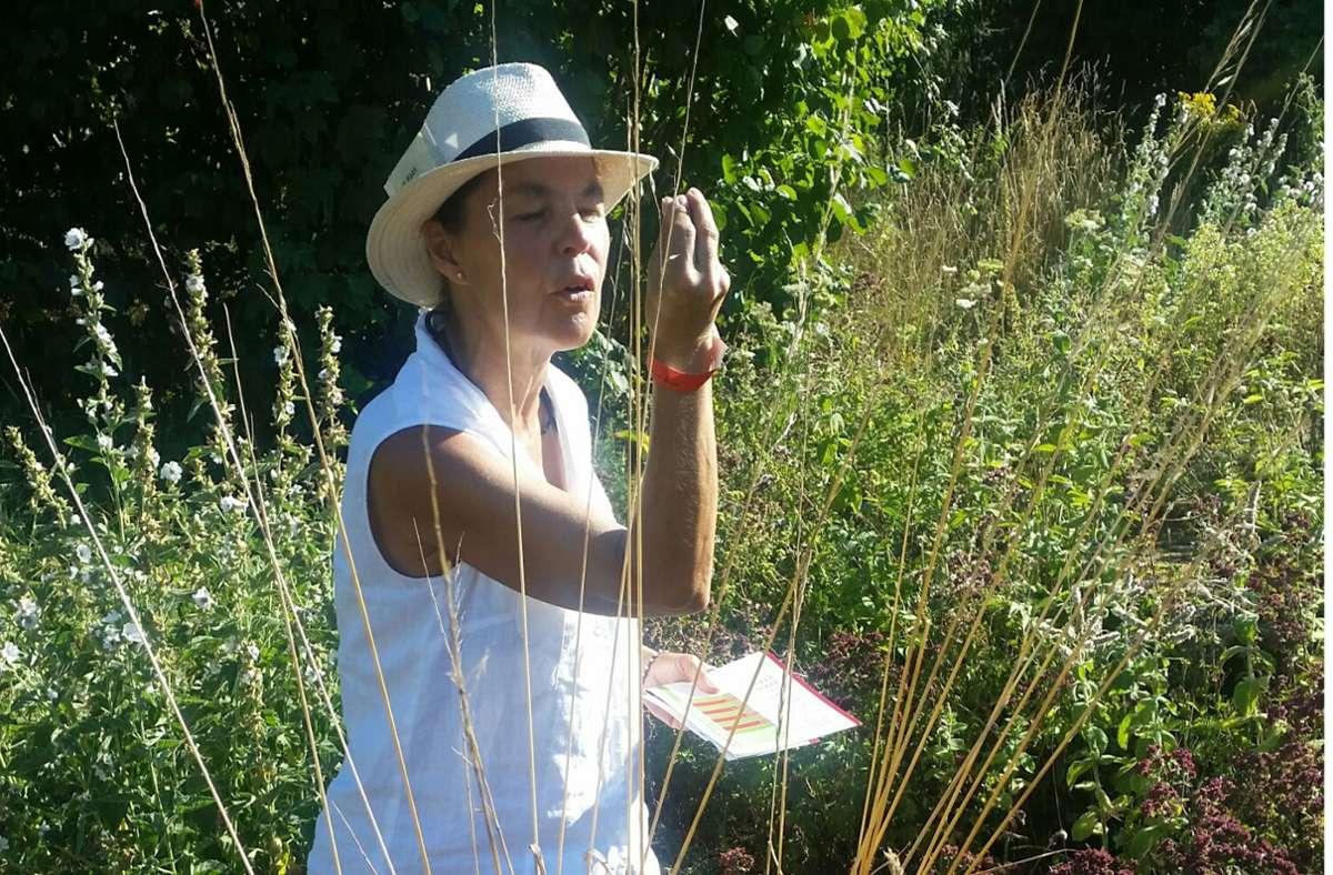 Birgit Haas erklärt Pflanzen. Foto: Rutschmann