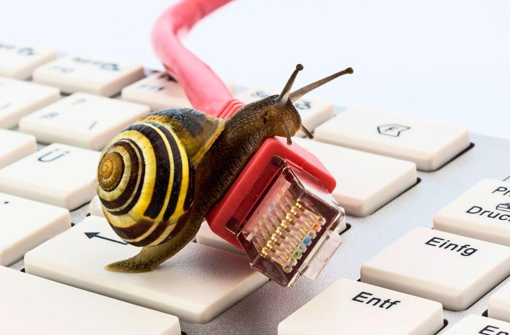 Sinnbild fürs Schneckentempo beim Ausbau der Breitbandversorgung: Viel passiert ist   bei der Glasfaser bisher nicht. Foto: mauritius-images