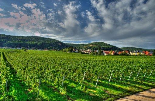 Die Pfalz – Deutschlands Vorzeige-Region