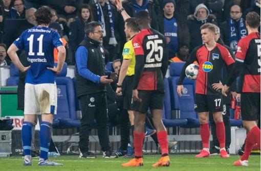"""Schalke-Trainer zu Rassismus-Vorfällen: """"Dann kicken wir nicht weiter"""""""