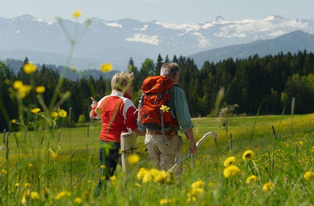 Wandern mit Panoramablick Foto: Scheidegg-Tourismus