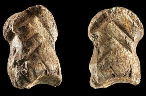 Der Neandertaler war ein  kreativer Künstler