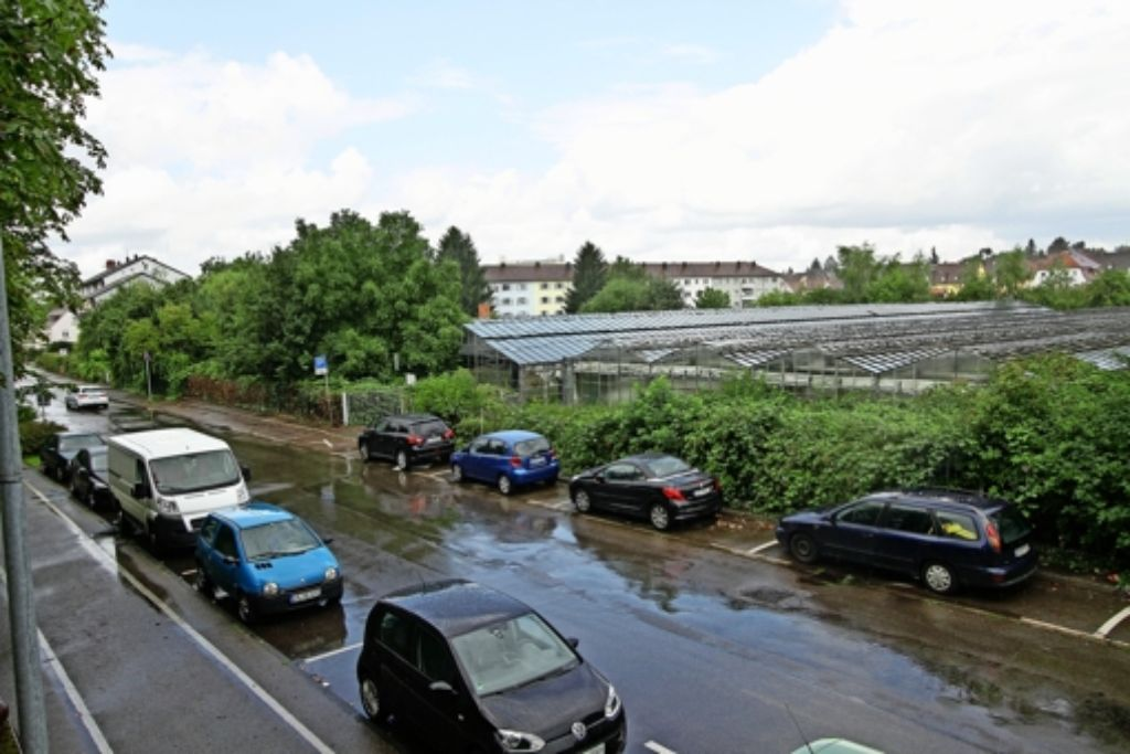 Entlang der Fuchshofstraße in der Oststadt soll neu gebaut werden. Foto: factum/Bach