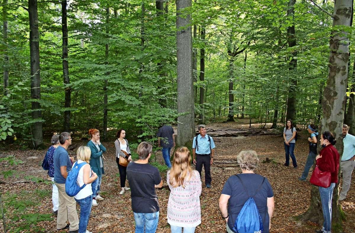 Wie groß wird eine Baumkrone? Die Teilnehmer des Rundgangs stellen sich entsprechend im Kreis auf. Foto: Jacqueline Fritsch/ch