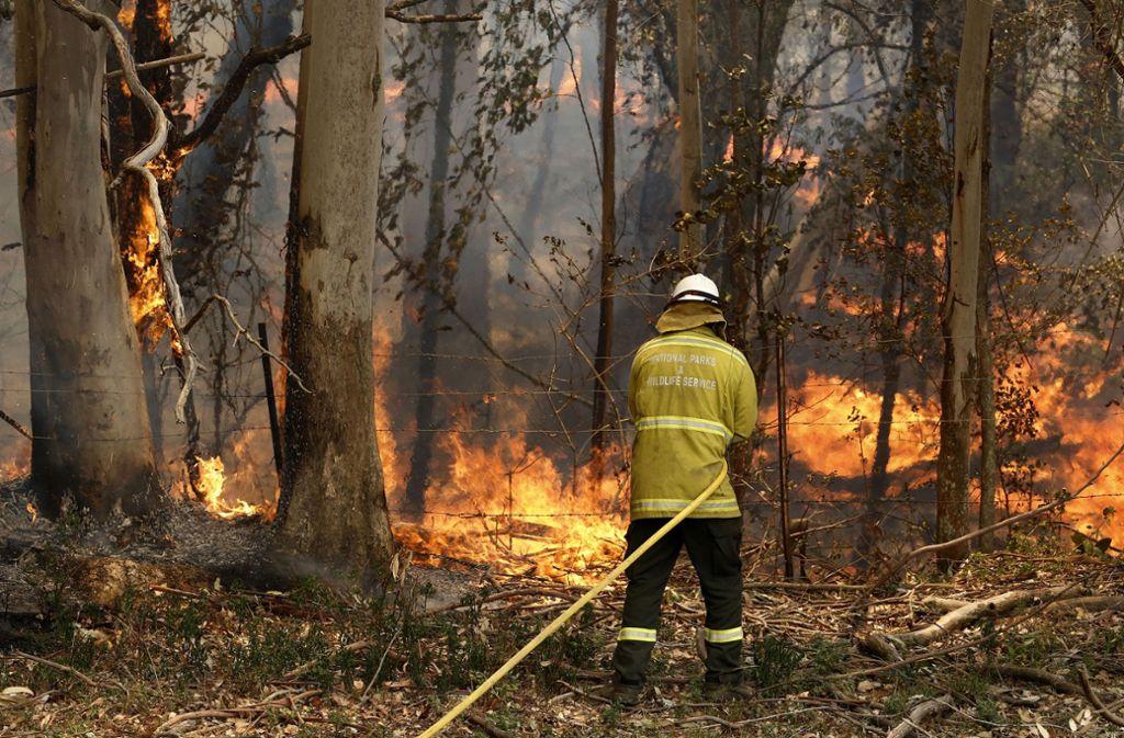 Die Buschbrände im Südosten von Australien sind besonders schlimm. Foto: dpa/Darren Pateman