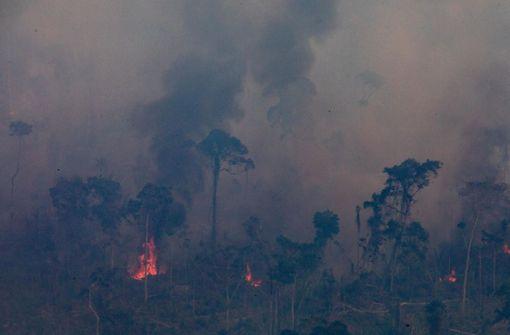 Die Bilder von den Bränden sind schrecklich – manche aber fake