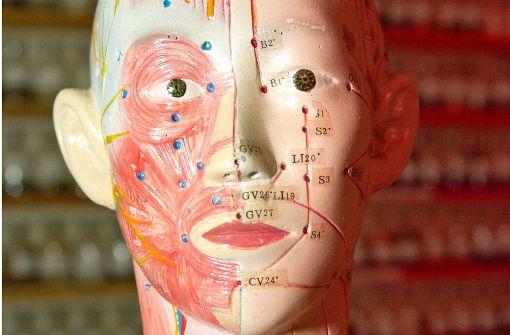 Diagnose mit dem Muskeltest