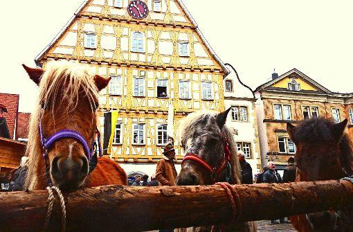 Pferdemarkt: Party, Ponys und Posaunen