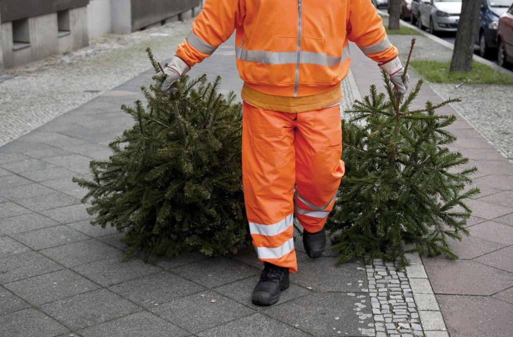 Weihnachtsbäume können in Stuttgart an zentralen Sammelstellen des Eigenbetriebs Abfallwirtschaft (AWS) kostenlos abgelegt werden. Foto: dpa