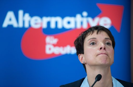 Ermittlungen gegen AfD-Chefin Petry