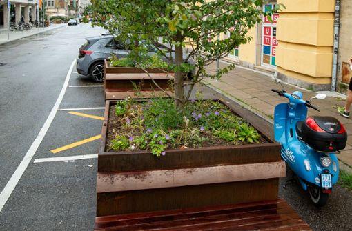 Sitzbänke aus Tropenholz – Umweltverbände sehen das kritisch