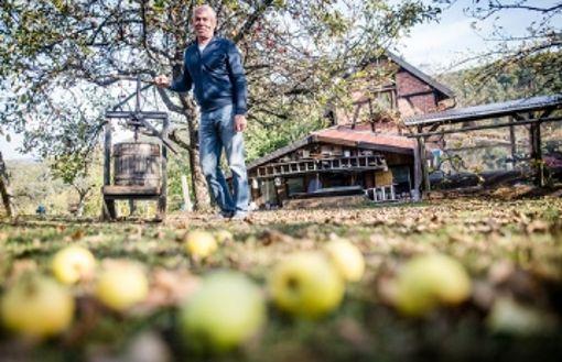 Warum niemand mehr Äpfel aufliest - droht das Ende des Mosts?
