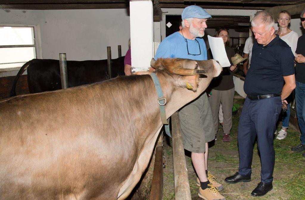 Oberbürgermeister Fritz Kuhn (rechts) im Stall mit Biobauer Klaus Wais und dem Ochsen Emil, einem württembergischen Braunvieh. Foto: Lichtgut - Oliver Willikonsky
