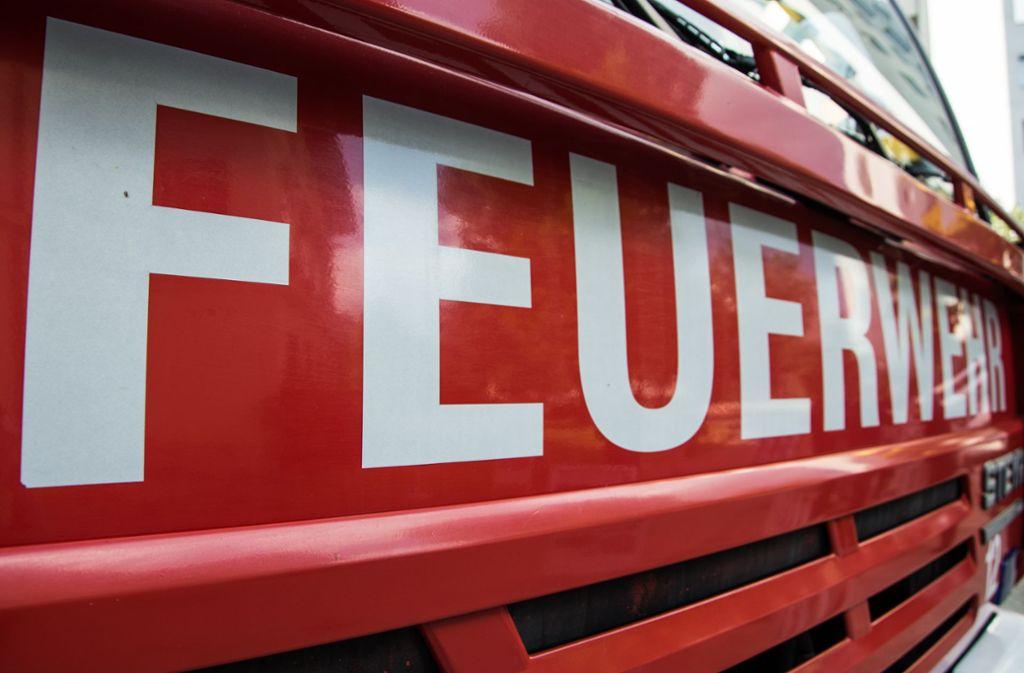 Gleich zwei Einsätze gleichzeitig hatte die Leonberger Feuerwehr am Freitag. Foto: pixabay.com