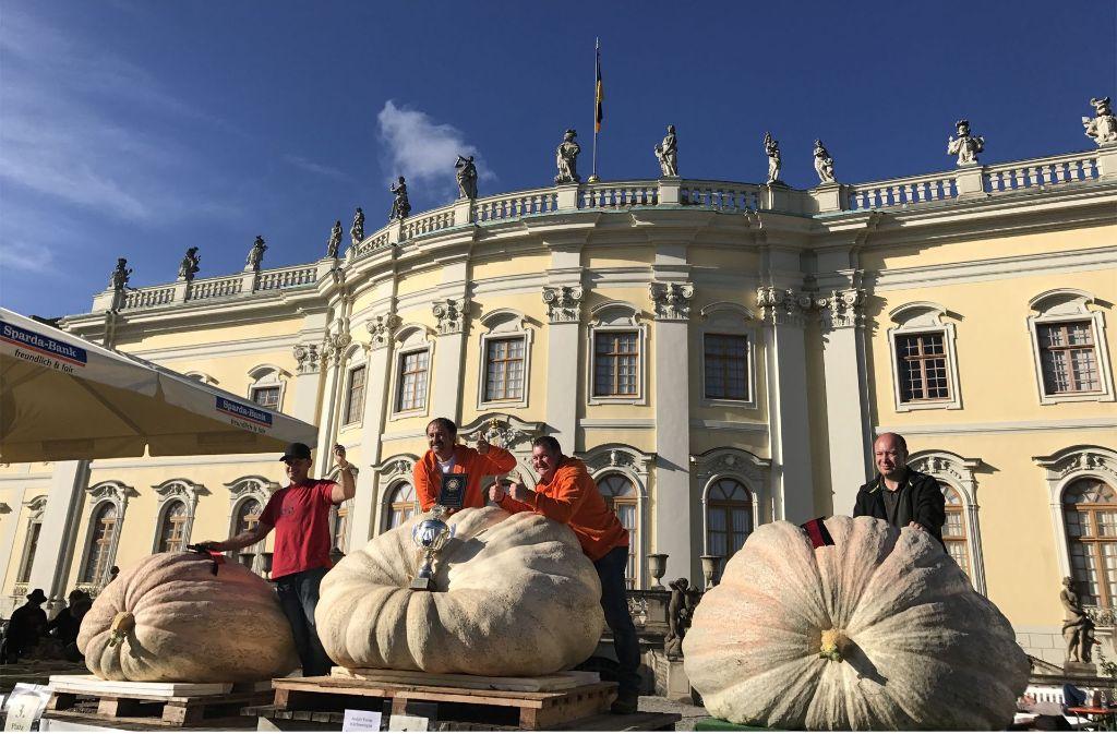 Mehr als zwei Tonnen bringen die drei Kürbisse zusammen auf die Waage. Foto: Blühendes Barock