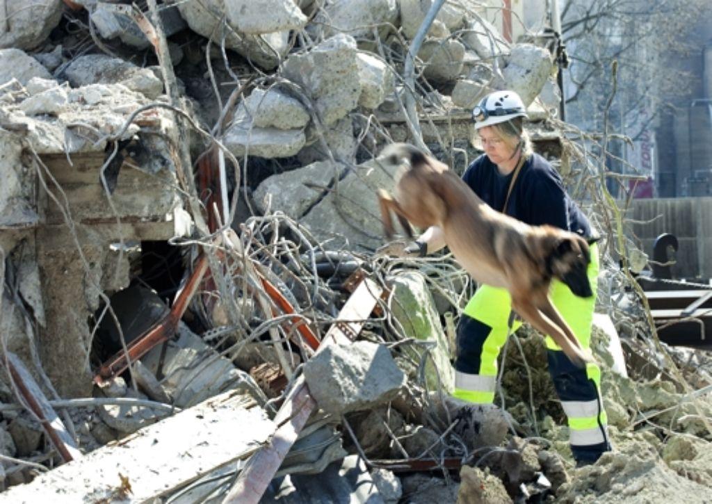 Schon die Trittsicherheit in Trümmern müssen die Hunde üben. Foto: Horst Rudel