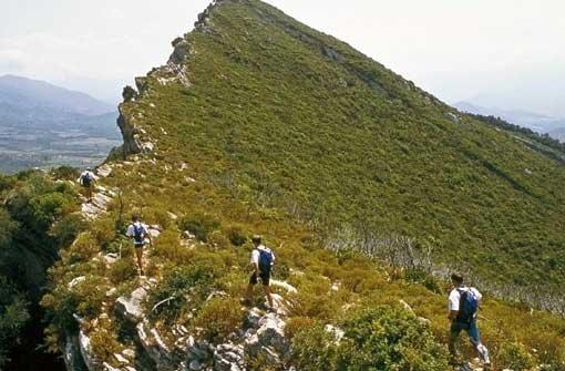 Korsika: Der Duft der Macchia