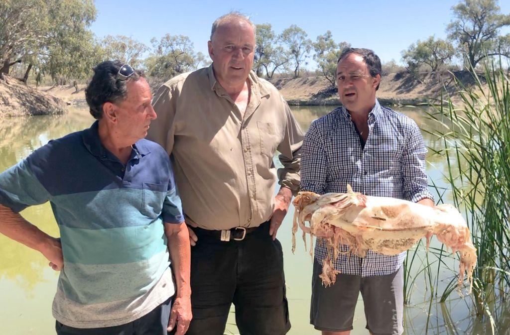 Politiker Jeremy Buckingham (rechts) macht sich ein Bild von dem verheerenden Fischsterben. Foto: Office of Jeremy Buckingham MLC