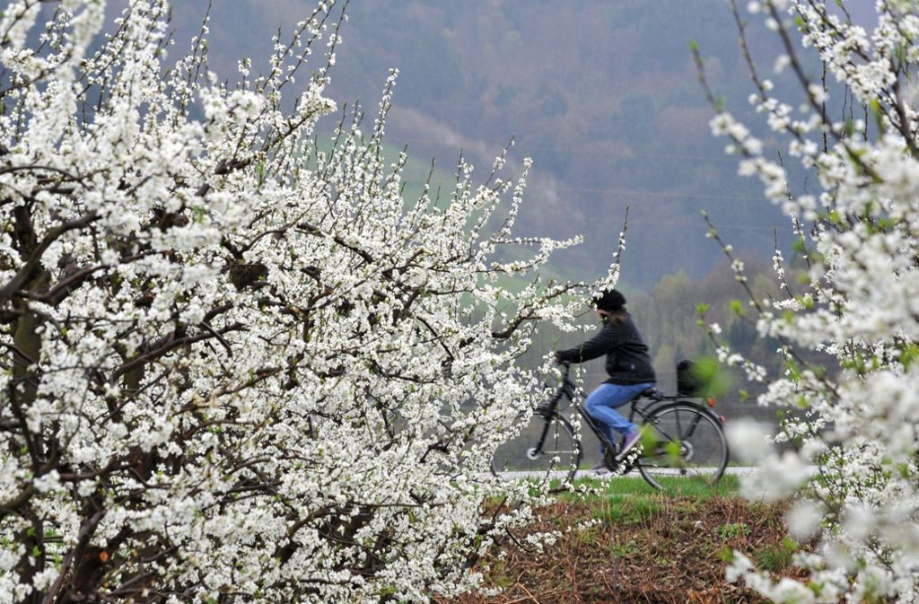 Temperaturmäßig macht der Frühling eine Verschnaufpause – aber die Wetteraussichten für die kommenden Tage machen Hoffnung. Foto: dpa