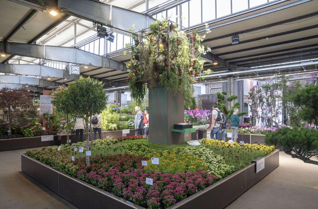 Der Fruchtschuppen ist Ort verschiedener Blumenschauen gewesen. Foto: Buga/Jürgen Häffner