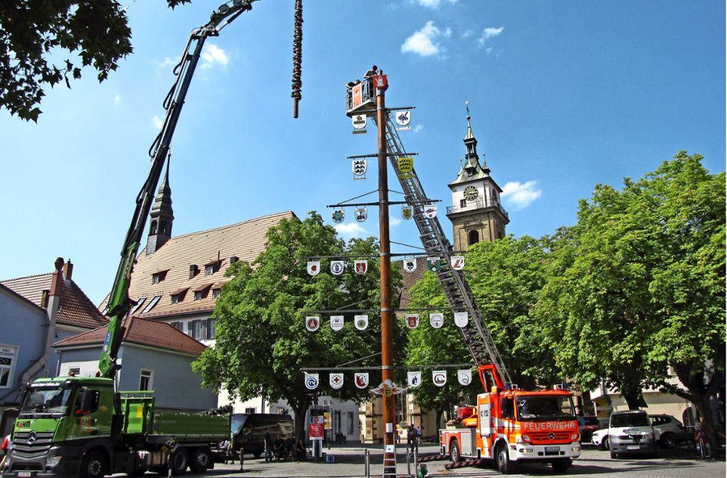 Der Vereins- und Handwerkerbaum  hat eine neue Spitze. Foto: