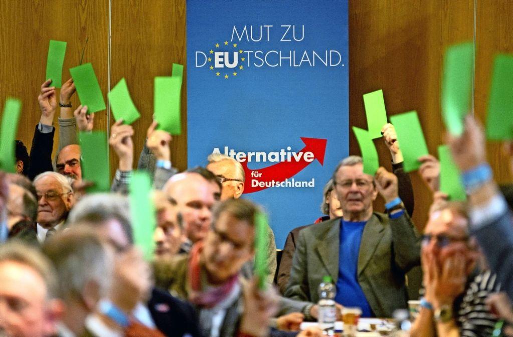 """Sehnsucht nach dem """"alten Deutschland"""": die AfD-Delegierten arbeiten sich durchs Programm. Foto: dpa"""