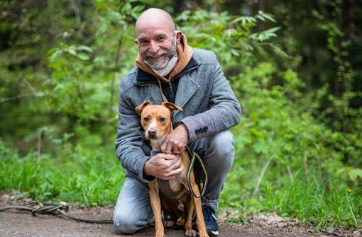 So denken  Hundebesitzer über den geplanten Hundeführerschein