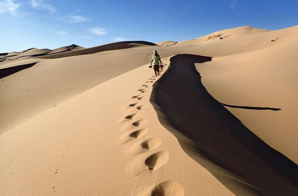 Hansjörg Eisele und Sieglinde Helbig auf Wüstentrip mit Kamelen. Foto: Eisele (z)