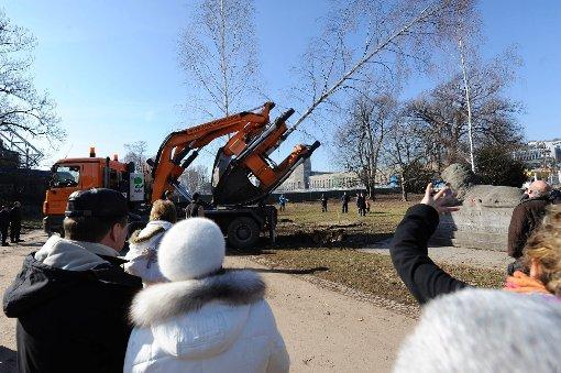 S21: Weitere Bäume ausgegraben